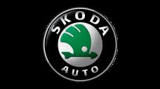 Пружины на Skoda